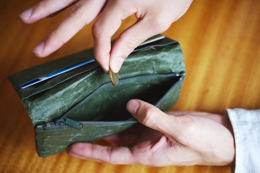 grünes portemonnaie mit geld