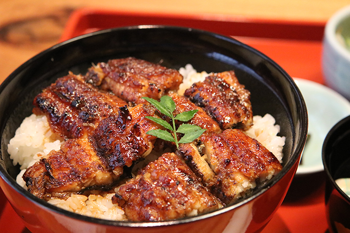 unadon - grilled Japanese eel on rice