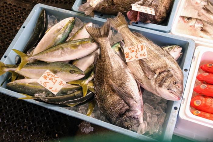 fischmarkt in hakata