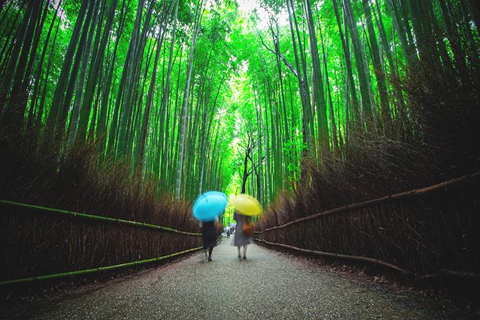 kyoto in arashiyama spazieren